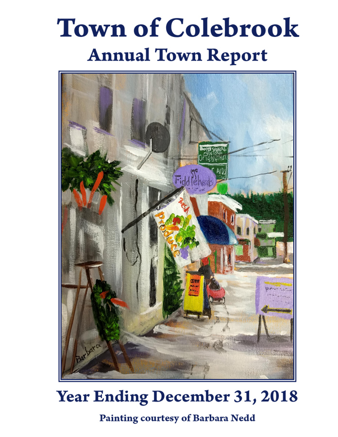 Town of Colebrook Report 2018 1
